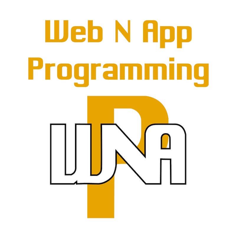 web n app programming